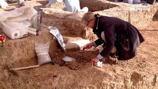 Excavating the world