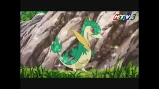 Pokemon - Trailer (Tập 29 - 32) [HTV3 Official]