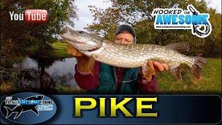 PIKE FISHING Tips for Small Streams - TAFishing