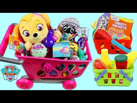 Xxx Mp4 PAW PATROL Pup Baby Skye Goes Shopping For Groceries 3gp Sex