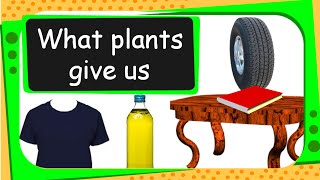 Science - Uses of Plants - English