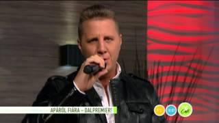 Dalpremier: Roma nyelven énekli Jimmy dalát Zámbó Krisztián - 2015.11.20. - tv2.hu/fem3cafe