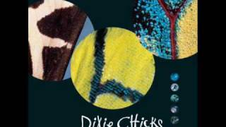 The Dixie Chicks-Don't Waste Your Heart