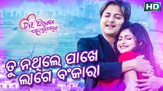 TU NATHILE PAKHE LAGE BANJARA || ତୁ ନଥିଲେ ପାଖେ ଲାଗେ ବଂଜାରା || Sarthak Music's 20th Movie
