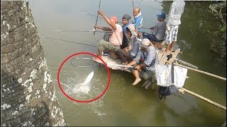 Best Fish Hunting   Awesome Fishing in BD  traditional fishing in village  Fishing competition