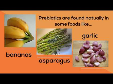 Gut Intuition: The Power of Prebiotics and Mental Health