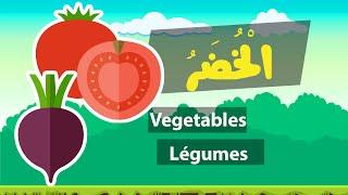Learn arabic (vegetables) – Apprendre l'arabe (Les légumes) – مفردات الخضر باللغة العربية
