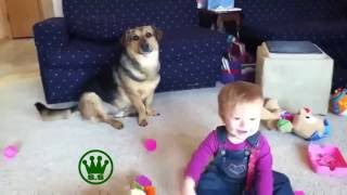 Funny Videos That Make You Laugh So Hard You Cry Funny Baby Videos part 2