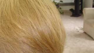 Barrido color cabello  rubio oscuro ceniza a rubio claro dorado