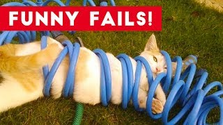 Funniest Animal Fails July 2017 Compilation | Funny Pet Videos