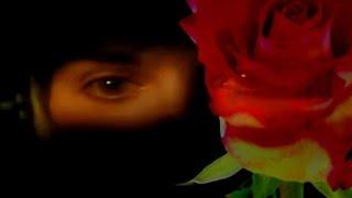 Enya - China Roses (Music Video)