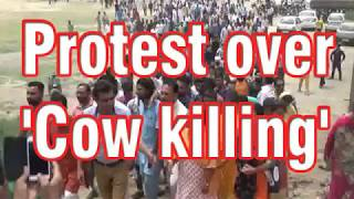 Protest over 'Cow killing'