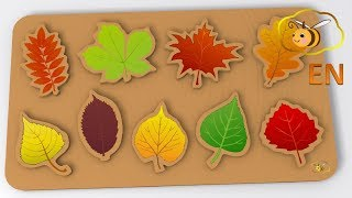 Baby toys cartoons for children: learn trees by fallen leaves toy puzzle.