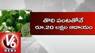 Capsicum Cultivation In Polyhouse || Kadapa Farmer || V6 News