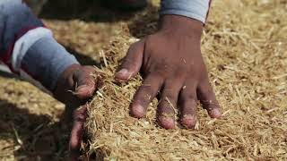 Instructional Video for Shivansh Fertilizer