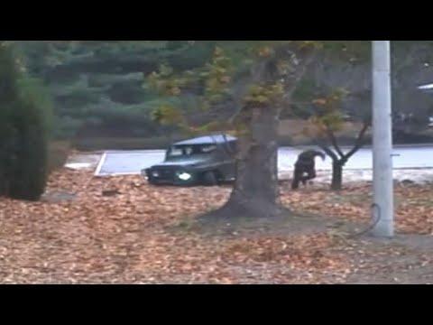 Dramatic footage of N. Korea defector's border dash