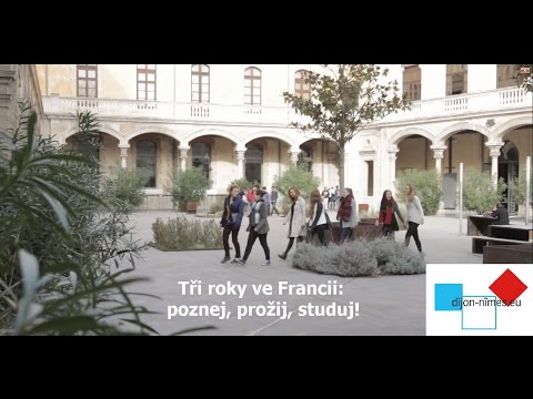 České sekce - Tři roky ve Francii (standardní kvalita)