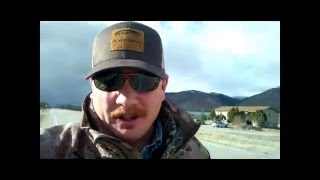 Vlog #2: Encounter With 2 BULL MOOSE & A Big Announcement!!