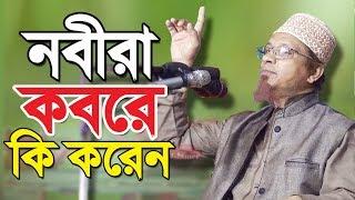 নবীরা কবরের ভেতর কি করেন | Allahor Golami | Mufti Kazi Ibrahim | Bangla Waz