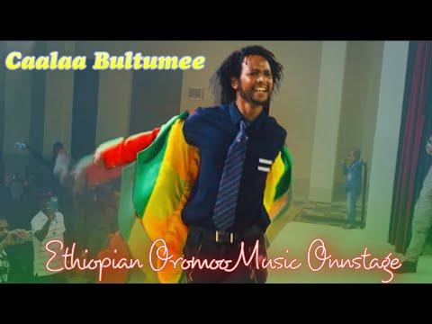 Xxx Mp4 Caalaa Bultumee Oromo Music Sirna Eebba Filmii Sibirii Irratti JHB Mayfair 3gp Sex