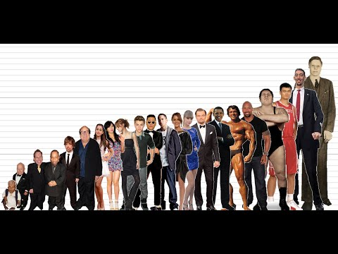 Celebrity Height Comparison Chart 10K Subscribers Special
