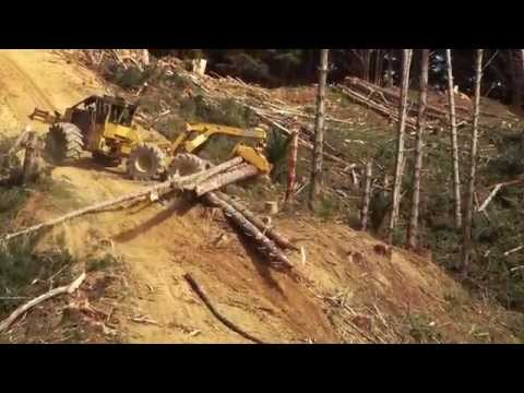Skidder Tigercat 635D Steep Slope Operation