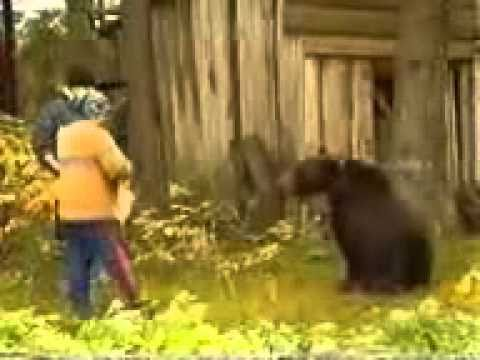 Bear Vs Woman