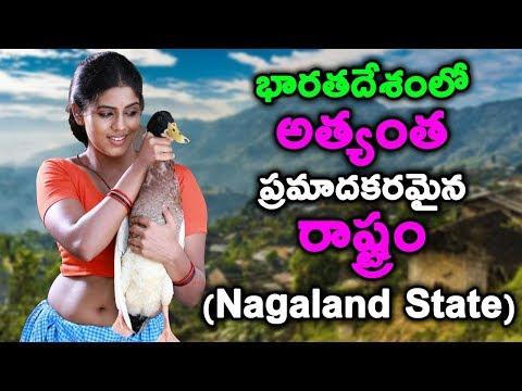 Xxx Mp4 Nagaland Facts And Informations T Talks 3gp Sex