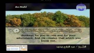 تلاوات خاشعة ومتنوعة من قناة المجد للقران الكريم يوم 14 رمضان 1438 هجري