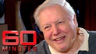 Living legend Sir David Attenborough -  one of nature