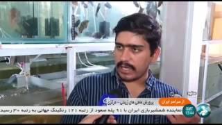 Iran Aquarium fish farming, Saveh city پرورش ماهيان زينتي ساوه ايران