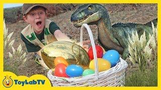 Golden Easter Egg Hunt! Dinosaur Surprise Toys Challenge & T-Rex Chase for Kids   ToyLabTV