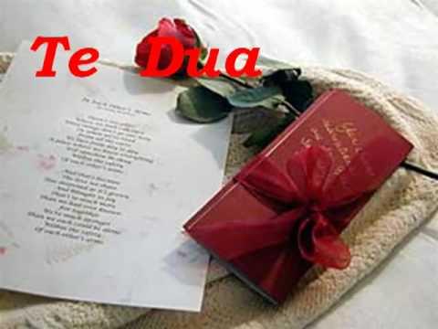 poezi dashurie Te dua