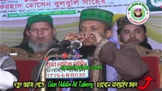 হাবিবুল্লার শান মান ইজ্জত ও আজমত | waliullah aashiqui | sunni bangla waz | 2017