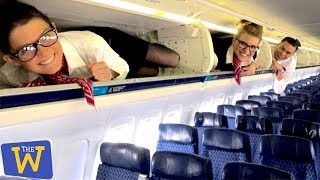 The Craziest Things People Have Done on Airplanes!