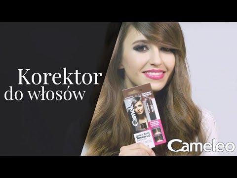 Cameleo Touch-Up Stick - Korektor tuszujący odrosty i siwe włosy