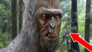 HUNTING BIGFOOT IN THE WOODS - Scariest Game Ever!!! (SCARY)