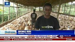 Tech Firms Help Nigerian Farmers Scale Up  Business Incorporated 