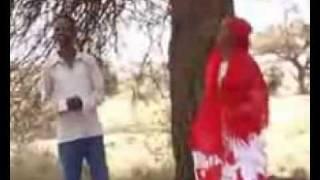 Fanax iyo Ubax-Somali song