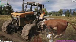 The Far Cry 5 Experience