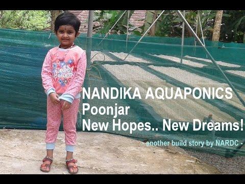Xxx Mp4 Nandika Aquaponics Build Story 3gp Sex