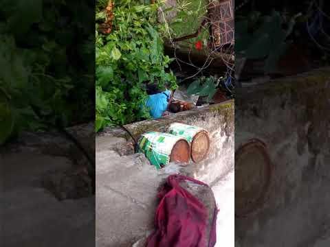 Xxx Mp4 Nepali Police Catching Thief 3gp Sex