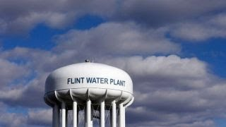 Flint water crisis increased fetal deaths, lowered fertility rates, study claims