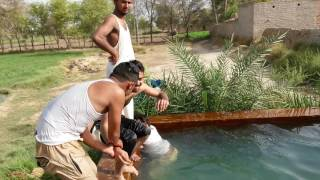 Swimming in tube well Bhatti 2016