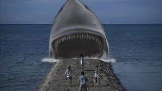 Shark Movie Review: Jaws In Japan (Psychoshark)