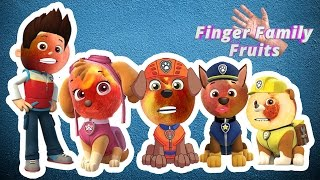 Paw Patrol Wrong Heads | Paw Patrol Finger Family Song for Kids