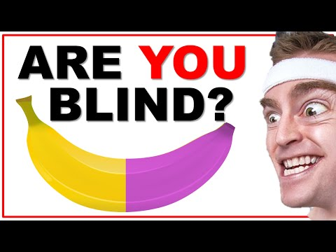 Xxx Mp4 Are You Color Blind The Quick Brain Test With Answers 3gp Sex