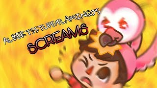 Every AlbertsStuff/Flamingo Screams