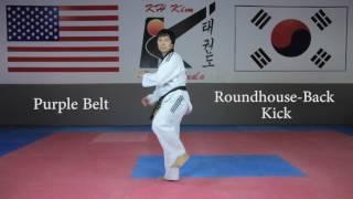 KH Kim Taekwondo Basic Kick Tutorial