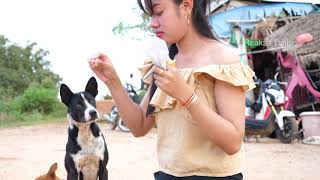 Top Smart and cute dog videos - Beautiful girl playing and give food to puppies Part 3